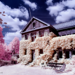 Learn How To Take Infrared Photography