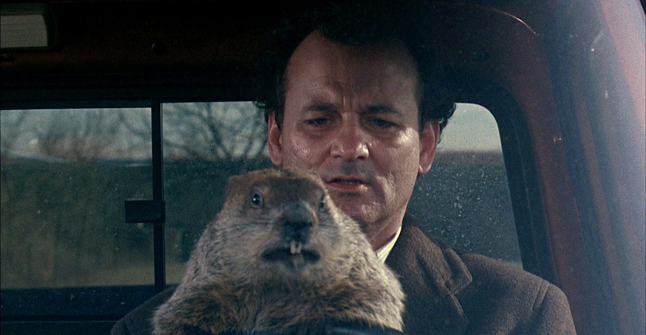 Groundhog Day Bill Murray Gif