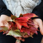 A Filmmaker's Favorite Things About Fall