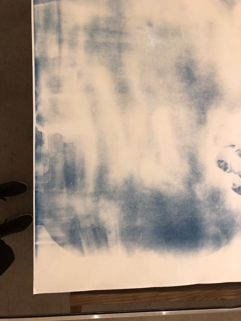 What Is Cyanotype Photography New York Film Academy