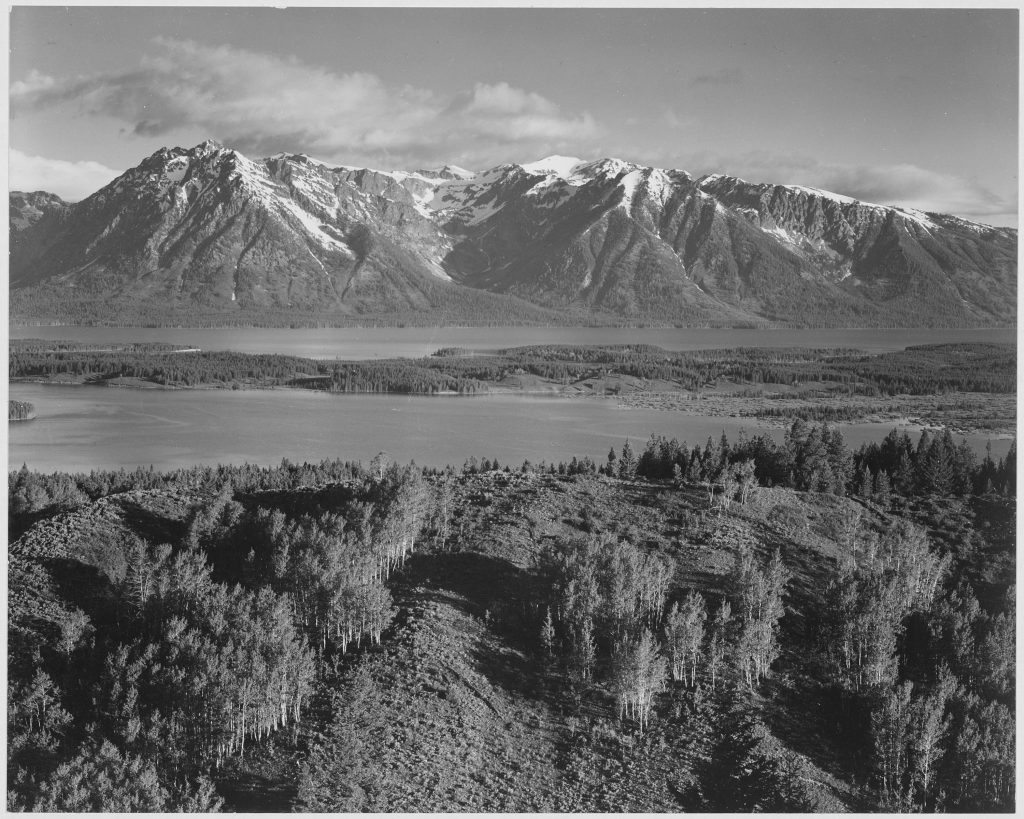Ansel Adams public domain