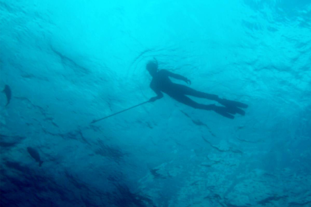Person snorkeling holding a spear in the ocean